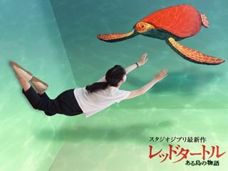 """Studio Ghibli collaboration project """"Sea Turtle Exhibition"""""""