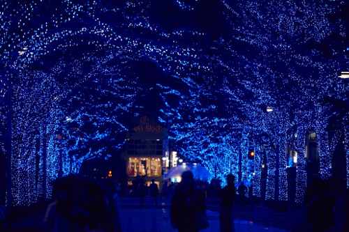 """Blue Grotto"" SHIBUYA Illumination"