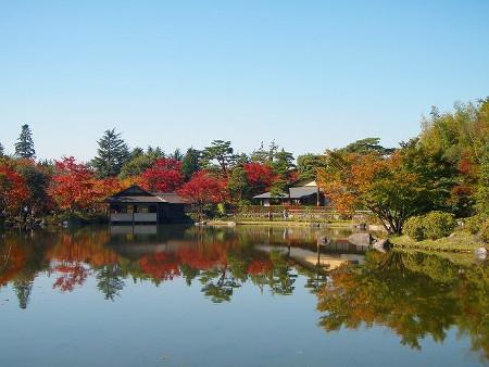 ≪Famous Autumn Foliage Spots≫ Showa Kinen Park