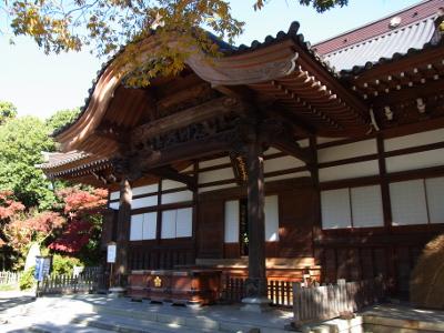 ≪Hatsumode Spot≫ Jindaiji Temple