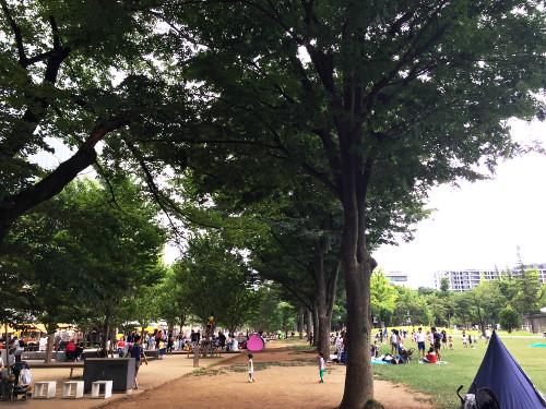 Nakanoshikinomori Park