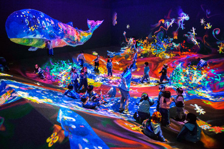 teamLab Jungle & Future Park