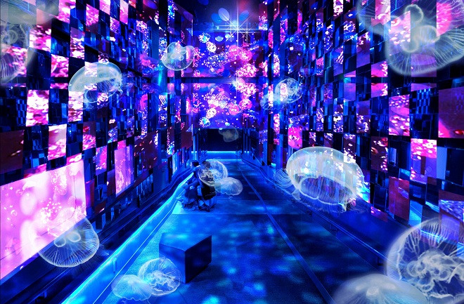 Fairy tale in Aquarium (Sumida Aquarium)
